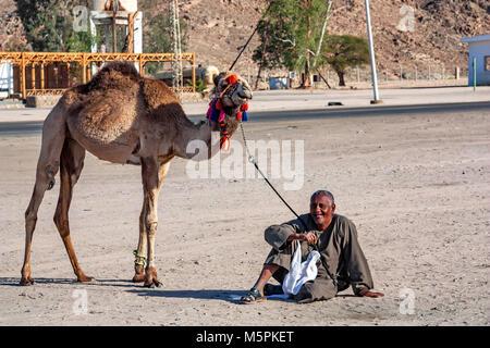 HURGHADA, EGYPT- FEBRUARY 22, 2010: Unidentified smiling camel rider in Egypt - Stock Photo