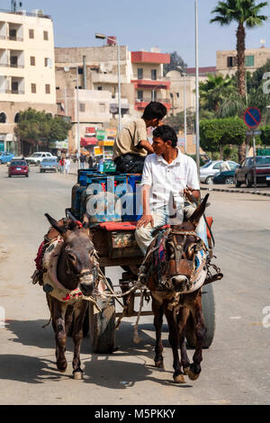 HURGHADA, EGYPT- FEBRUARY 22, 2010: Two unidentified mule riders on cart - Stock Photo