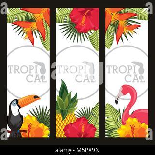 set tropical flower leaves animal card - Stock Photo