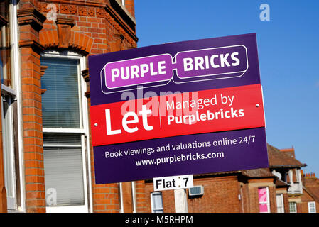 purple bricks on-line estate agents sign, norfolk, england - Stock Photo