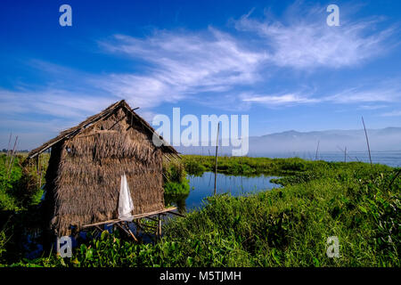 Swimming gardens are set up on Inle lake to grow tomatoes and other vegetables, the hut is used for the storage - Stock Photo
