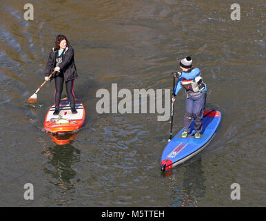 Two female Stand up Paddle boarders on the River Thames in England - Stock Photo
