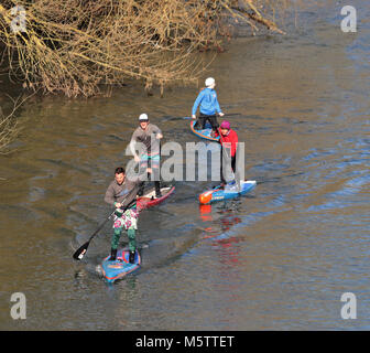 Group of male and female Stand up Paddle boarders on the River Thames in England - Stock Photo