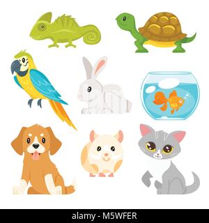 Vector cartoon style set of home animal pet - cat, dog, hamster and others. Isolated on white background. - Stock Photo