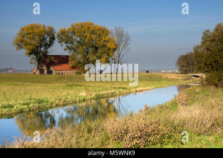 The Bevert is a former creek in the Dutch National Park de Biesbosch - Stock Photo