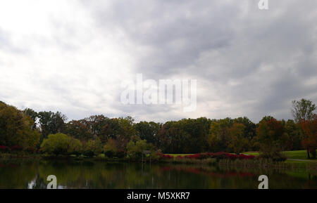 Fall Landscape around a pond with red bushes - Stock Photo