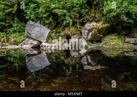 Reflections in Dark Mirror River, Oparara Basin, New Zealand - Stock Photo