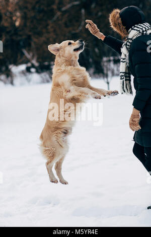 Image of woman playing with dog in winter park