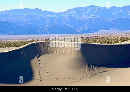 Curves and ridges of of  Mesquite Sand Dunes in Death Valley - Stock Photo