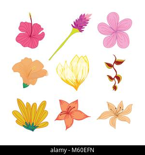 Various Tropical Flowers Hand Drawn Illustration Set - Stock Photo