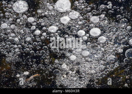 Frozen air bubbles in natural ice of pond / lake in winter - Stock Photo