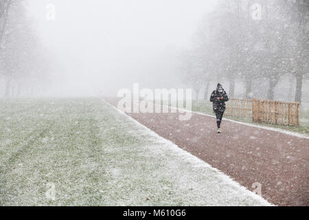 Windsor, UK. 27th February, 2018. A woman walks on the Long Walk in Windsor Great Park in swirling snow. Credit: - Stock Photo