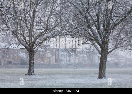 Windsor, UK. 27th February, 2018. Snow falls in Windsor Great Park. Credit: Mark Kerrison/Alamy Live News - Stock Photo