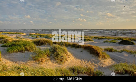 Light and shadow play on the dunes along the Baltic sea - Stock Photo