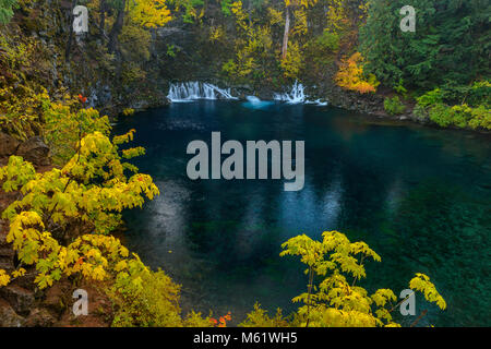 Tamolitch Falls, Blue Pool, McKenzie River, National Wild and Scenic River, Willamette National Forest, Oregon - Stock Photo