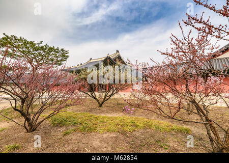 Spring at Changdeokgung Palace, Seoul, South Korea - Stock Photo