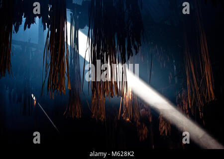 A ray of sunlight shinning into a longhouse at Sainte-Marie among the Hurons. smoke house. - Stock Photo