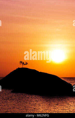 Silhouette of single tree standing alone on top of rock over the sea at purple, pink, orange sunset in Koh Phangan - Stock Photo