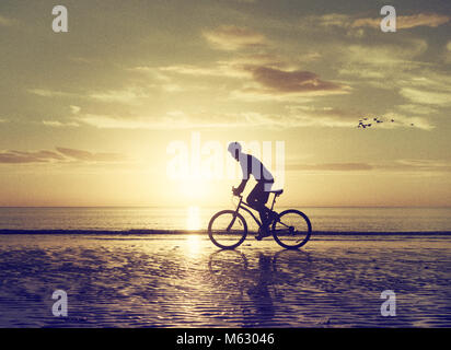 Mountain biker on beach at sunrise with birds flying behind. - Stock Photo