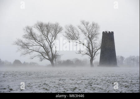 Beverley, UK. 28th Feb, 2018. A dog walker shelters behind a tree in blizzard conditions during 'The Beast From - Stock Photo