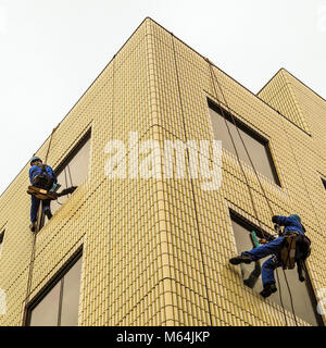 Two window washers at work. Windows washers abseiling down the sides of a building wall on small wooden seats to - Stock Photo
