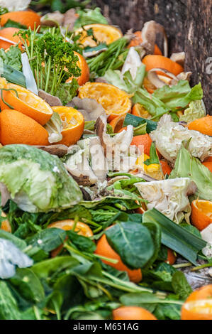organic waste on a big heap - Stock Photo