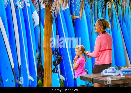Surfing board rentals on Kauai - Stock Photo