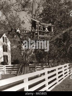 1950s 1960s CHILDREN PLAYING IN TREE HOUSE IN FENCED WOODED BACKYARD - j1515 CRS001 HARS FULL-LENGTH PHYSICAL FITNESS - Stock Photo