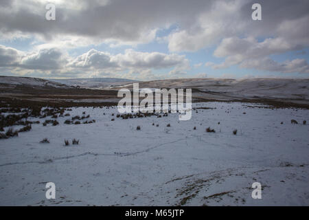Darwen Moor and surroundings. Part of the West Pennine Moors a Site of Special Scientific Interest. - Stock Photo