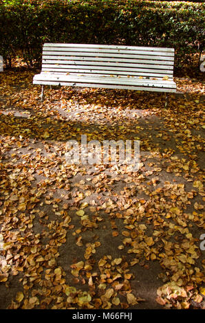 Lonely white wooden bench in old city park in autumn - Stock Photo