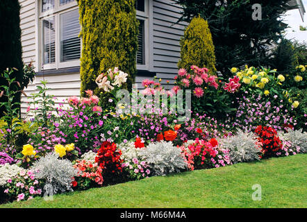 1990s BLOOMING FLOWERS IN A BUNGALOW GARDEN CHRISTCHURCH NEW ZEALAND - kg11304 SCH001 HARS WAX SPIRITUALITY PLANNER - Stock Photo