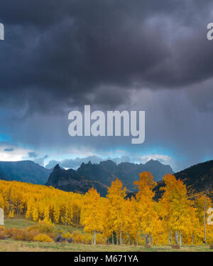 Approaching Storm, Aspens, Cimarron Ridge, Precipice Peak, Uncompahgre National Forest, Colorado - Stock Photo