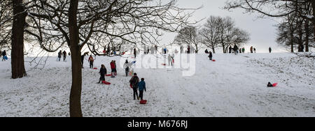 Leeds, UK. 28th Feb, 2018. People seen using their sleds in the snow in Roundhay Park in Leeds.Freezing weather - Stock Photo