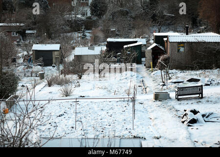 Hampstead. 1st Mar, 2018. UK Weather: Pic shows: Storm Emma   Snowy allotment played have for these plot holders - Stock Photo