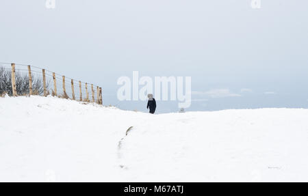 Brighton, UK. 1st March 2018. UK Weather: Ditchling Beacon in the snow along the South Downs Way just north of Brighton - Stock Photo