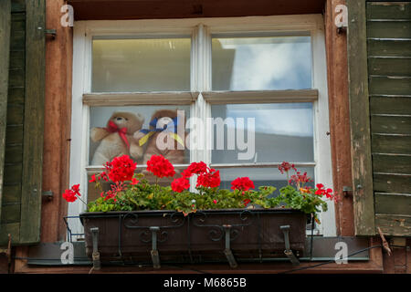 teddy bears looking through a window of a typical half timber house in the medieval burg of Meersburg, on the lake - Stock Photo