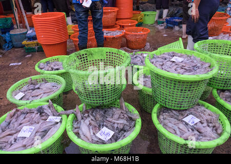 BANKONG , THAILAND - January 2, 2015 : Sell squid at a street market in Thailand - Stock Photo