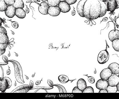 Berry Fruits, Illustration Frame of Hand Drawn Sketch Bunch of Fresh Juicy Red Grapes and Pitanga, Suriname Cherry - Stock Photo
