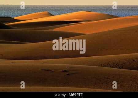 Gran Canaria, Duene, Duenen, Maspalomas, Sandduenen, Meer, - Stock Photo