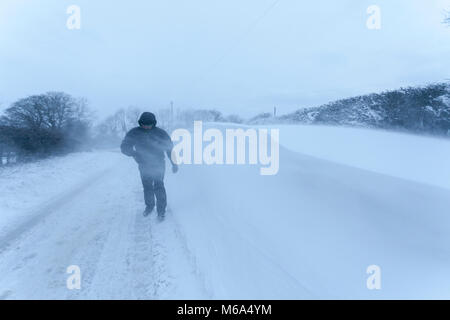 A person walking along a rural lane in the village of Lixwm during heavy blowing snow and a freezing temperatures - Stock Photo