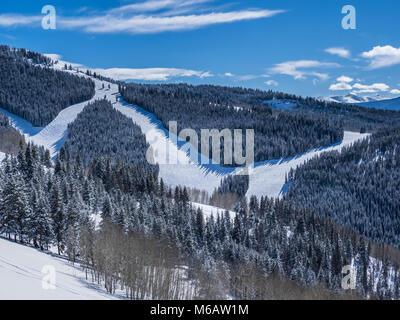 Ski runs in Game Creek Bowl, winter, Vail Ski Resort, Vail, Colorado. - Stock Photo
