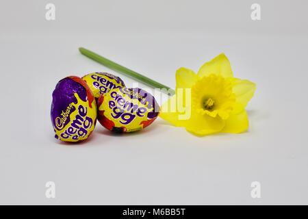 Cadburys Creme Eggs and a Daffodil (Narcissus poeticus)  the symbols of easter on a white background - Stock Photo
