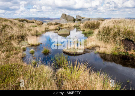 Peak District landscape. Small pool of water on moorland, Seal Edge, Kinder Scout, Derbyshire, England, UK - Stock Photo