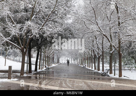 Lonely man walking in the park during an unusual snowstorm in Terrassa, Spain. - Stock Photo