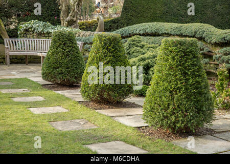 Shaped yew trees in a corner of York Gate Garden, Adel, Leeds - Stock Photo