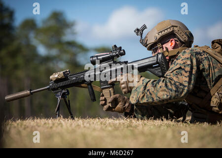 U.S. Marine Corps Lance Cpl. Albert Bridges, a rifleman with 3rd Battalion, 6th Marine Regiment, 2nd Marine Division - Stock Photo
