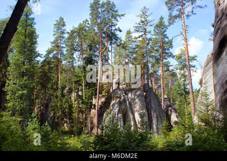 Sky, tree and rock. In the background is the rock and trees. - Stock Photo