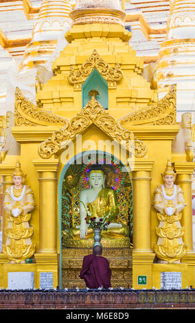 Buddhist monk praying at Shwedagon Pagoda, Yangon, Myanmar (Burma), Asia in February - Stock Photo
