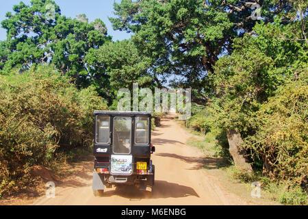 A safari jeep on a dirt road in the Yala National Park in Sri Lanka - Stock Photo