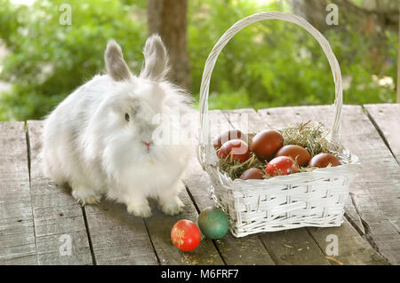White bunny near white basket with Easter eggs on old wooden table - Stock Photo